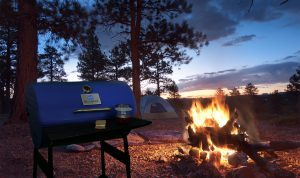 July_CampingV03.jpg