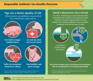 antibioticsinfographic5