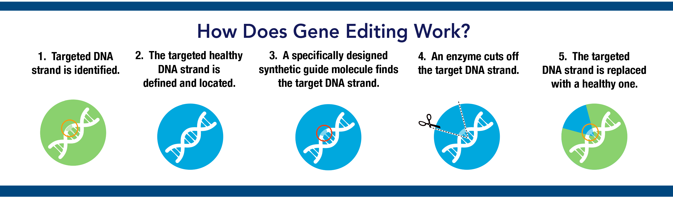 Image result for gene editing