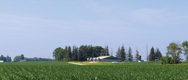 leon sheets farm