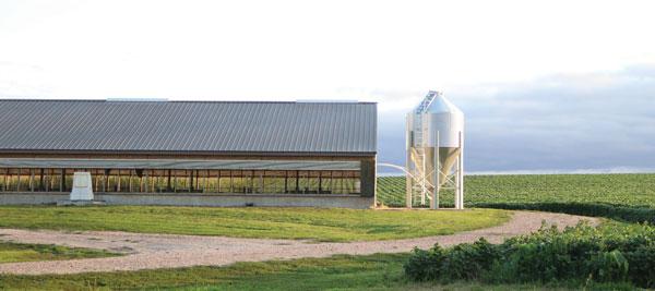 luckey farm photo